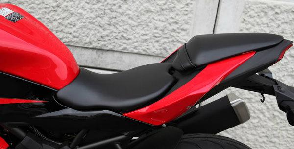 Ninja250SL 5